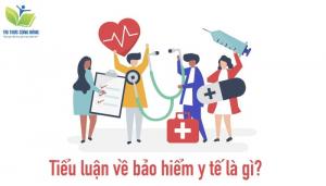 Lời mở đầu và kết luận bài tiểu luận về bảo hiểm y tế