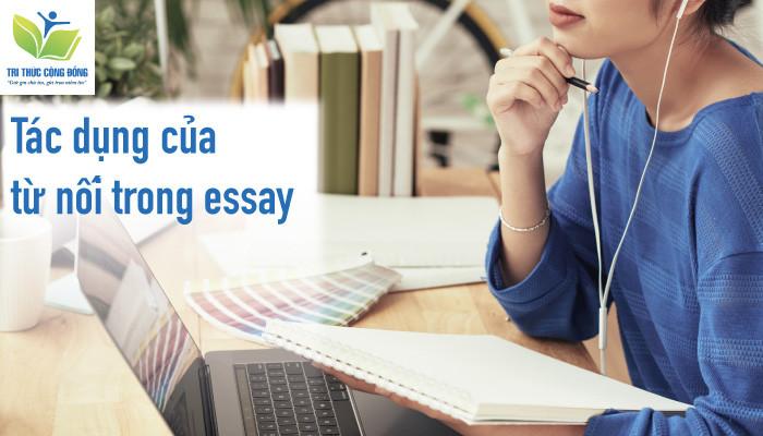 Tác dụng của các từ nối trong bài essay