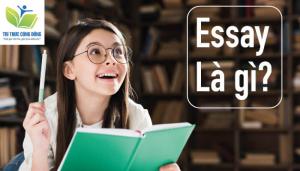Essay Là Gì? 6 dạng bài Essay phổ biến