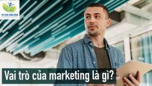 Kho các dạng đề tài tiểu luận Marketing mới nhất và có chọn lọc