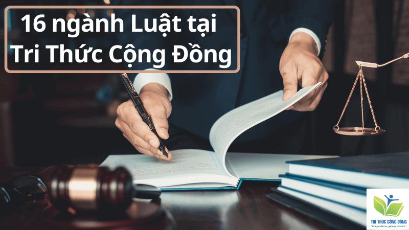 16 ngành luật tại Tri Thức Cộng Đồng