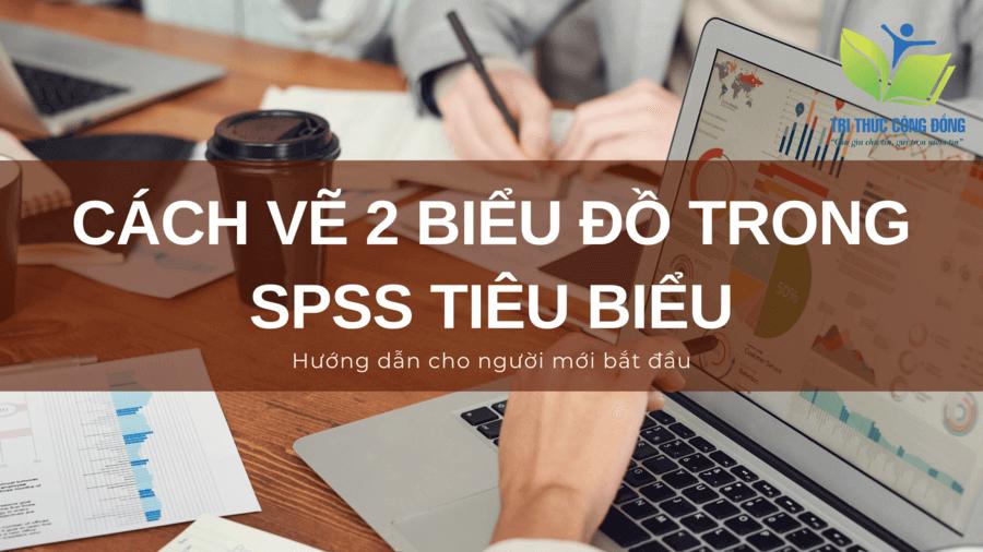 List 2 cách vẽ biểu đồ trong SPSS tiêu biểu