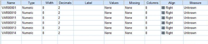 """Dữ liệu hiện lên tại sheet """"Variable View"""""""