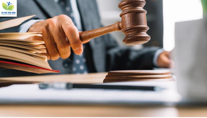 Nội dung của quy phạm pháp luật là gì?