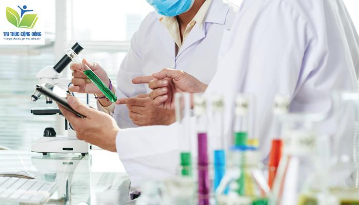 Chia Sẻ Cách Làm Tiểu Luận Phương Pháp Nghiên Cứu Khoa Học