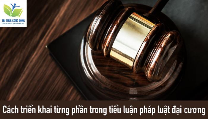 Cách triển khai từng phần trong tiểu luận pháp luật đại cương