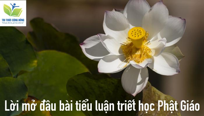 Lời mở đầu bài tiểu luận triết học Phật Giáo
