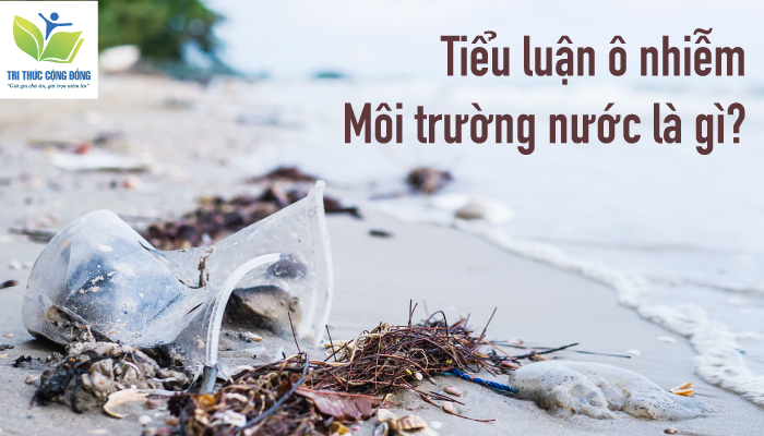 Download Miễn Phí mẫu tiểu luận ô nhiễm môi trường nước