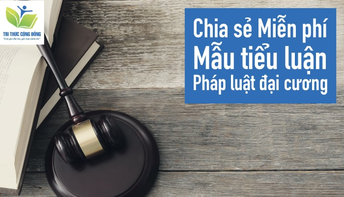 Chia sẻ Miễn phí mẫu tiểu luận pháp luật đại cương